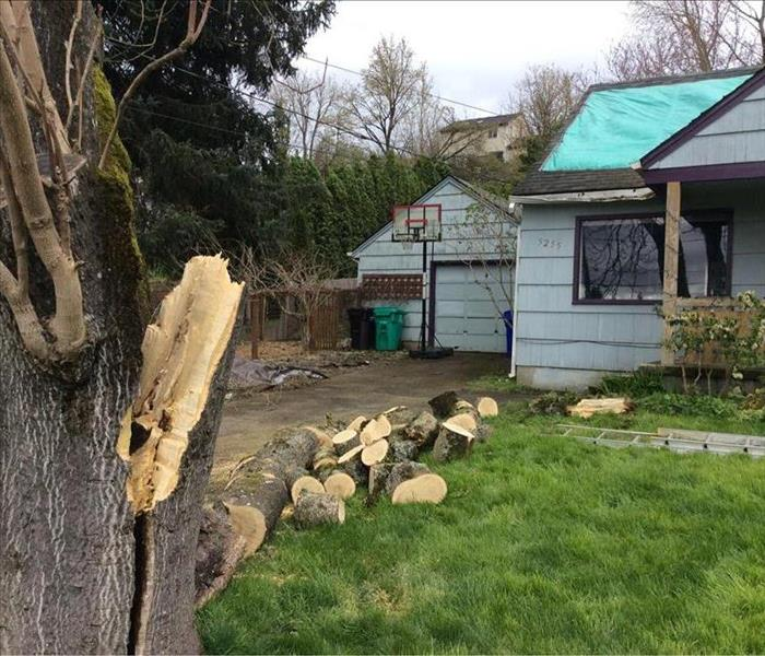 Windstorm in Portland, OR
